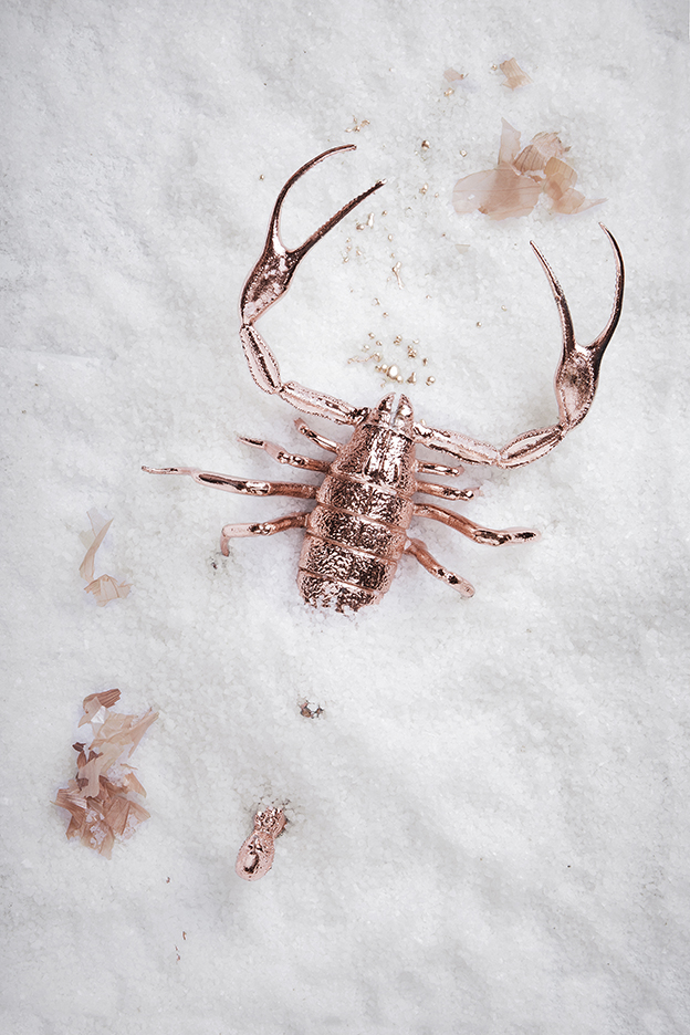Baby Rose Gold Scorpion